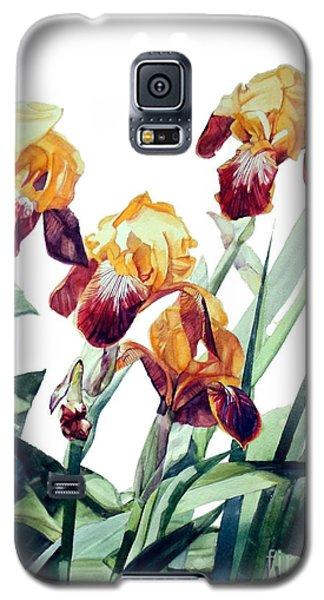 Watercolor Of Tall Bearded Irises I Call Iris La Vergine Degli Angeli Verdi Galaxy S5 Case