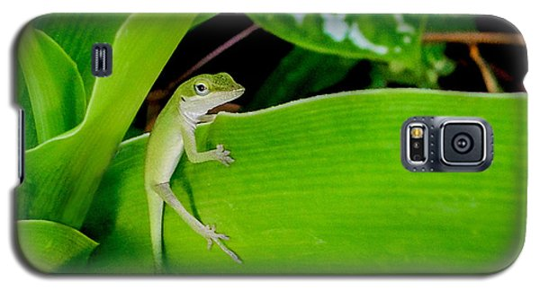 Galaxy S5 Case featuring the photograph It's Easy Being Green by TK Goforth