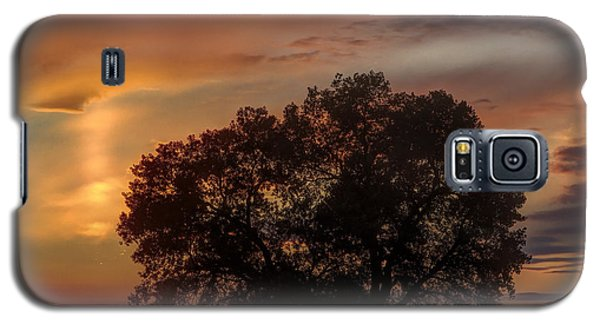 Galaxy S5 Case featuring the photograph Light Pillar And Cottonwood by Rob Graham