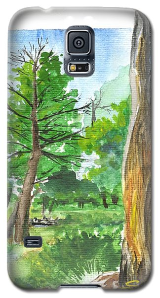 Lightening Strike Tree Galaxy S5 Case by Sherril Porter