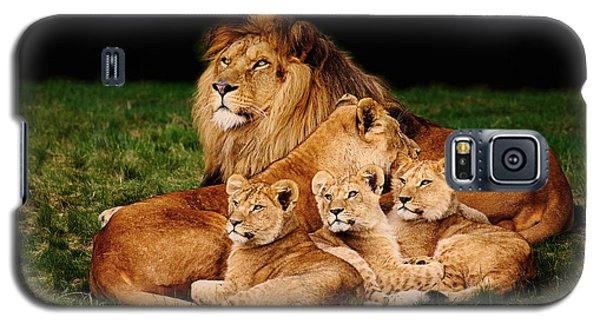 Galaxy S5 Case featuring the photograph Lion Family Lying In The Grass by Nick  Biemans