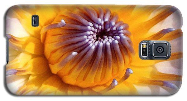 Lotus Lily Galaxy S5 Case