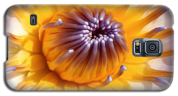 Lotus Lily Galaxy S5 Case by Jocelyn Kahawai