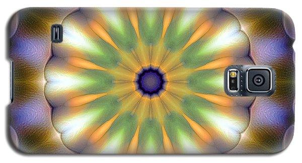 Mandala 105 Galaxy S5 Case by Terry Reynoldson