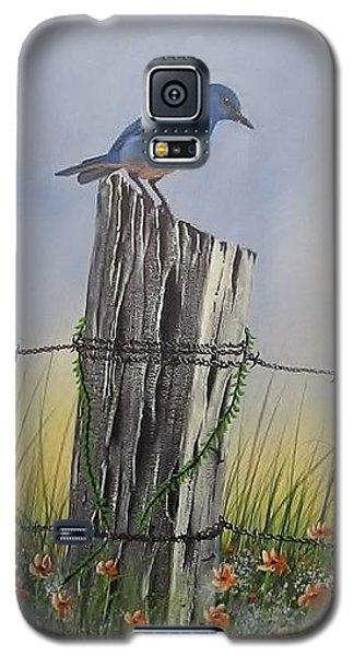 Mountain Bluebird Galaxy S5 Case