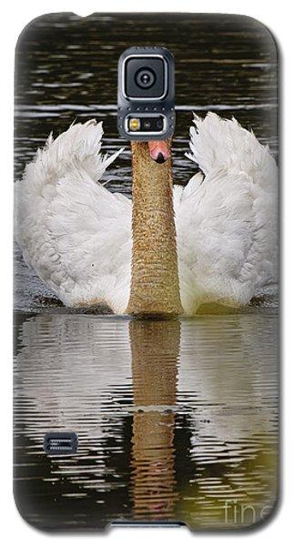 Mute Swan Galaxy S5 Case by Michael Cummings