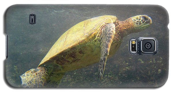 Nani Honu Galaxy S5 Case by Suzette Kallen