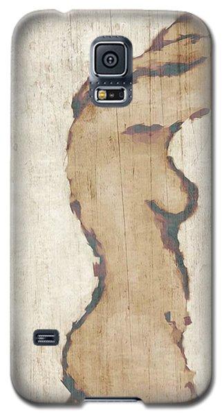 Nude Galaxy S5 Case