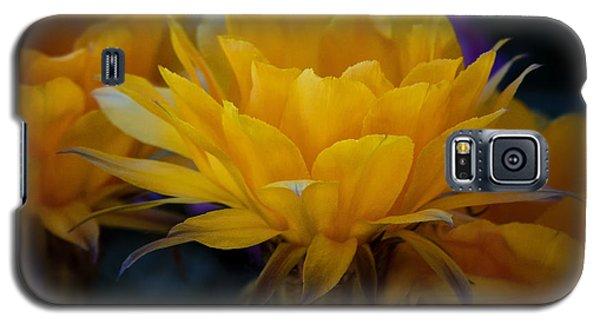 Orange Cactus Flowers  Galaxy S5 Case