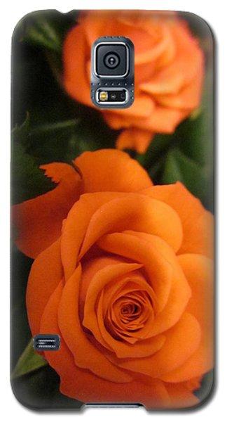 Orange Delight Galaxy S5 Case