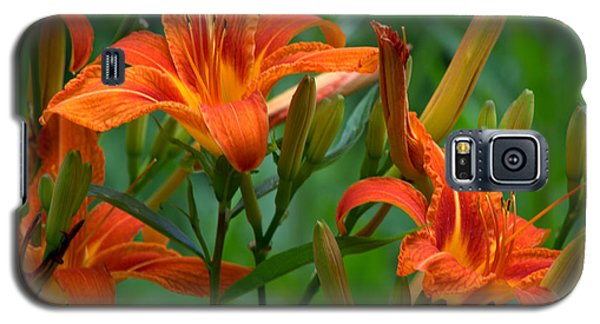 Galaxy S5 Case featuring the photograph Orange Lilly by Cathy Shiflett
