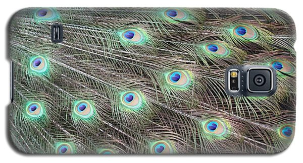 Peacock Feather Fiesta  Galaxy S5 Case by Diane Alexander