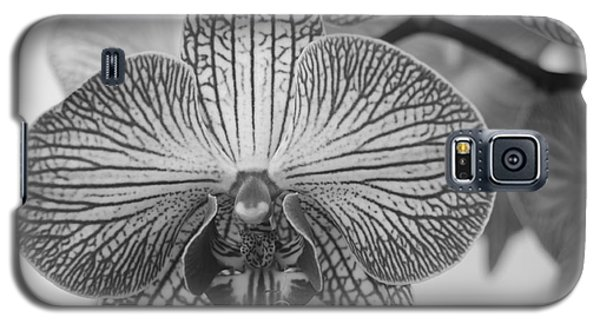 Phalaenopsis Orchid Galaxy S5 Case