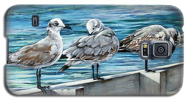 Pier Gulls Galaxy S5 Case