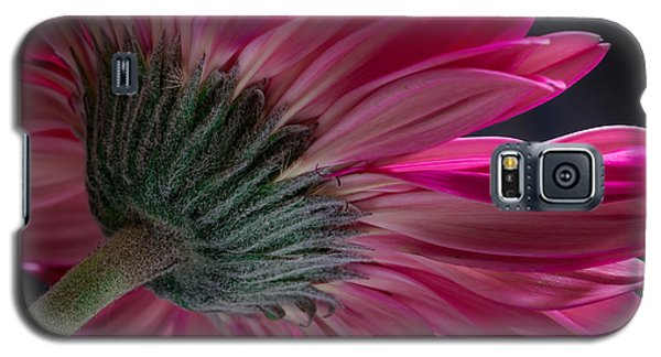 Galaxy S5 Case featuring the photograph Pink Flower by Edgar Laureano