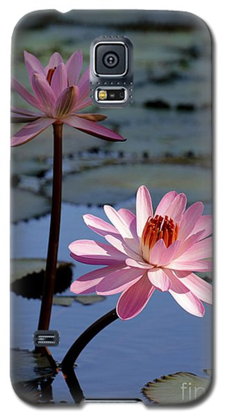 Pink Water Lily In The Spotlight Galaxy S5 Case