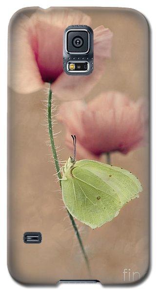 Poppies Galaxy S5 Case by Jaroslaw Blaminsky