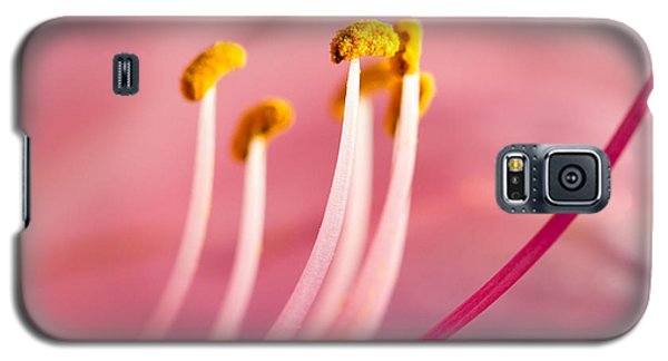 Galaxy S5 Case featuring the photograph Pretty In Pink by Annette Hugen