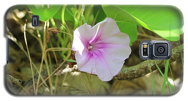Sunny Galaxy S5 Case - Purple Flower by Michael Kim