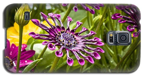 Purple Jungle Galaxy S5 Case