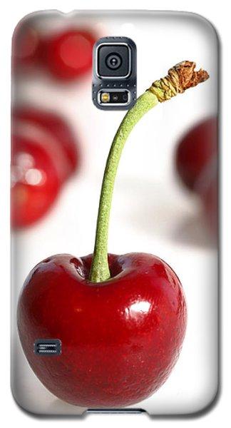 Red Cherries Galaxy S5 Case by Craig B