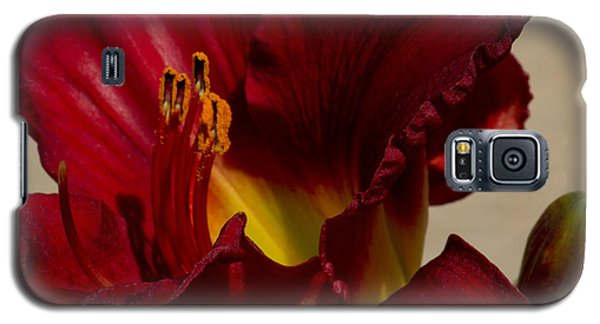 Galaxy S5 Case featuring the photograph Red Lily by Ivete Basso Photography
