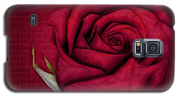 Galaxy S5 Case featuring the photograph Red Rose by Shirley Mangini