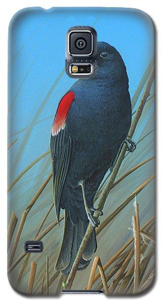 Red-winged Black Bird Galaxy S5 Case