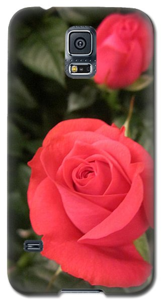 Roses In Red Galaxy S5 Case