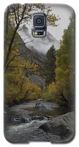 Rush Creek Aspen Trees Aerie Crag Galaxy S5 Case