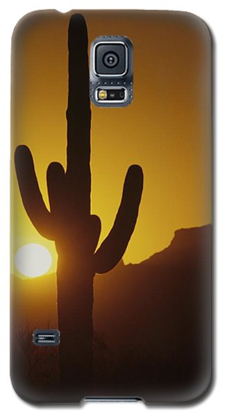 Saguaro Cactus And Sunset Galaxy S5 Case