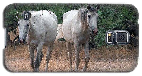 Salt River Wild Horse Galaxy S5 Case
