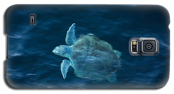 Galaxy S5 Case featuring the photograph Sea Turtle by Tammy Schneider
