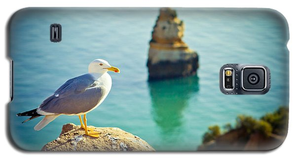 Seagull On The Rock Galaxy S5 Case