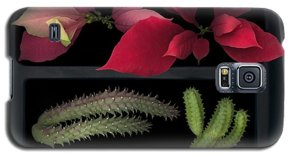 2 Seasons Galaxy S5 Case