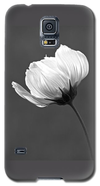Simply Beautiful In Black And White Galaxy S5 Case by Penny Meyers