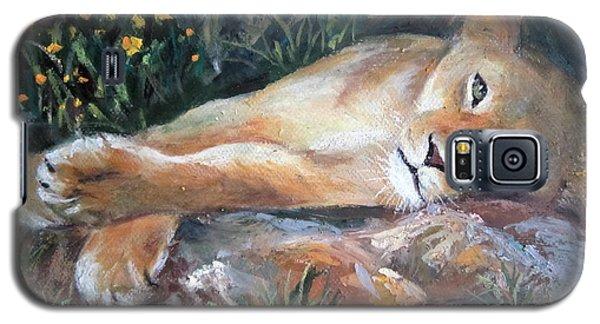 Sleep Lion Galaxy S5 Case by Jieming Wang