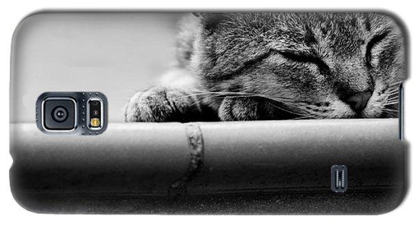 Sleeping Galaxy S5 Case by Laura Melis