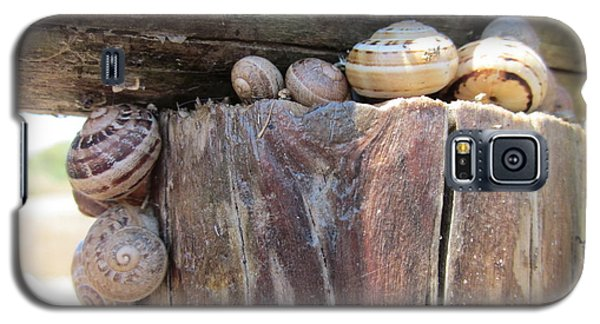 Snails Galaxy S5 Case