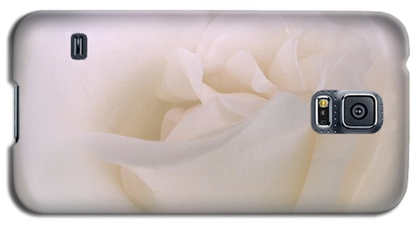 Softness Of A White Rose Flower Galaxy S5 Case