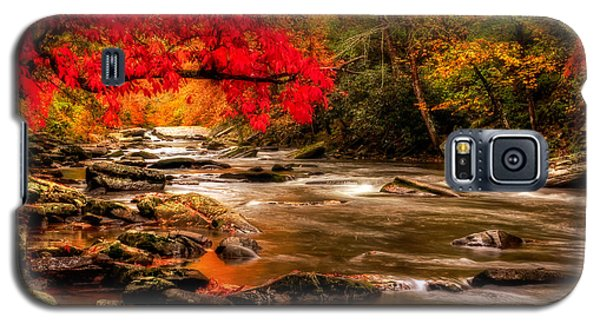 Soothing Red Creek Galaxy S5 Case