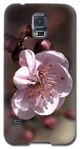Galaxy S5 Case featuring the photograph Spring Blossom by Joy Watson