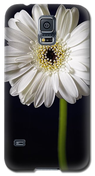 Galaxy S5 Case featuring the photograph Standing Tall by Kim Andelkovic