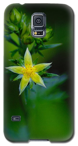 Starflower Galaxy S5 Case