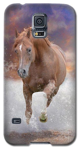 Stla Monty Galaxy S5 Case by Jim  Hatch