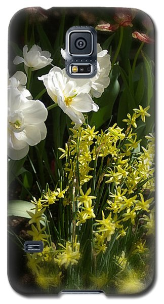 Galaxy S5 Case featuring the photograph Three Of A Kind by Randy Pollard