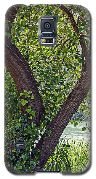 Galaxy S5 Case featuring the photograph Tree At Stow Lake by Kate Brown
