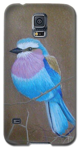 Violet-breasted Roller Bird Galaxy S5 Case