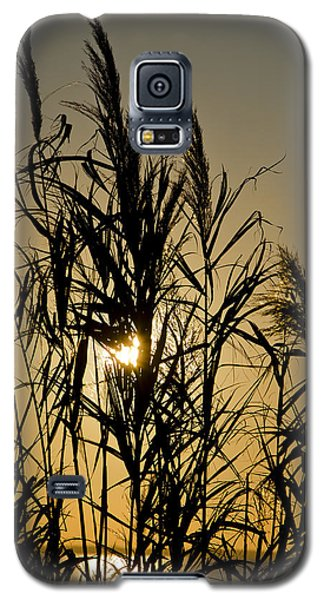 Galaxy S5 Case featuring the photograph Whalehead Sunset Obx #3 by Greg Reed