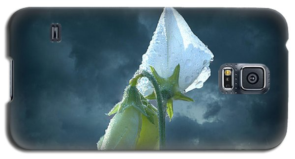 Galaxy S5 Case featuring the photograph White Sweet Pea  by Marjorie Imbeau